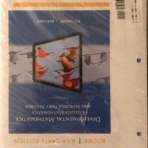 Mathematics and introductory algebra